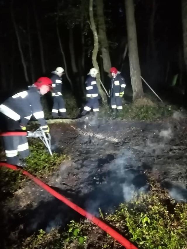 Pożar torfowiska w lesie. Strażacy z Gościna w akcji