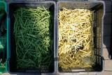 Trwa ostra wojna supermarketów z targowiskami o ceny świeżych warzyw: 23.08.2020. Co ma z tego klient