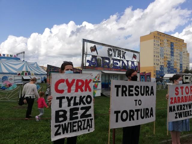 Protest przed cyrkiem Arena we Wrocławiu