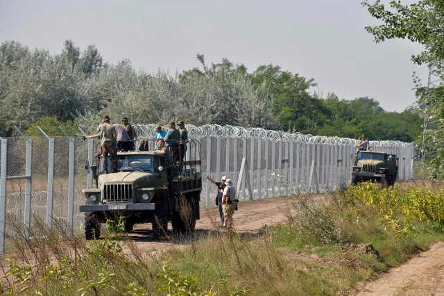 Węgierscy żołnierze przy budowie płotu na granicy z Serbią