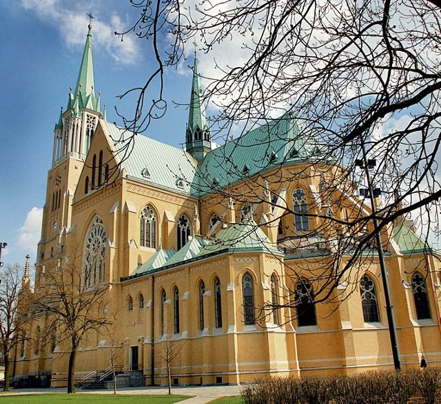 Historia katedry sięga 1895 roku, gdy powstał Komitet Budowy, któremu przewodził baron Juliusz Heinzel