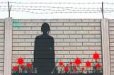 Zakupy z Covidem. 38-letnia Kamila z Torunia siedzi teraz w areszcie