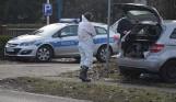 Zjadliwa ptasia grypa w okolicach Wągrowca. Inspekcja weterynaryjna przestrzega: Padło już kilka ptaków