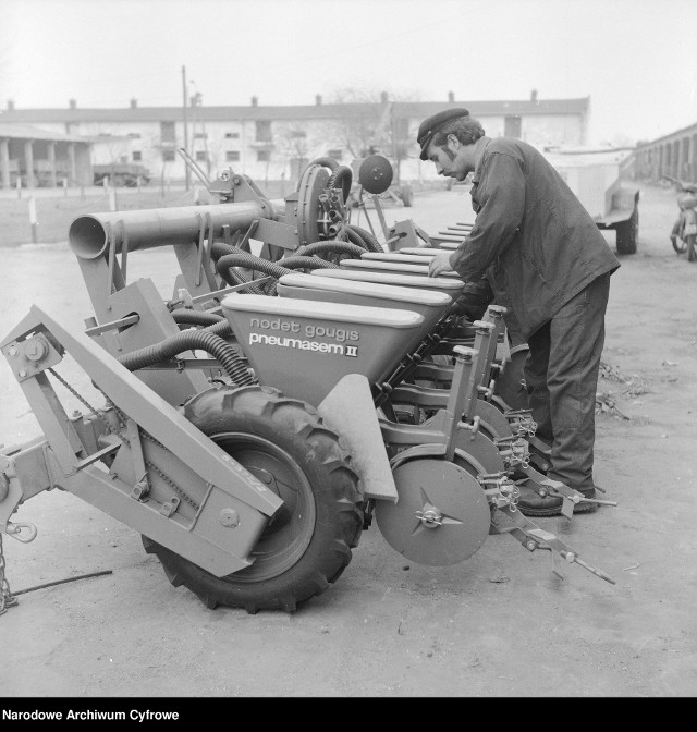 PGR-y tworzono od 1949 roku, zlikwidowano na początku lat 90. Ich pracownicy zostali pozostawieni sami sobie, bez pracy i perspektyw