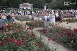 Różany Ogród Sztuki w Szczecinie. Orkiestra Wojskowa zagrała w święto Wojska Polskiego ZDJĘCIA