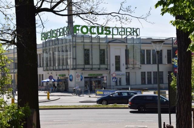 W galerii handlowej Focus Mall w Zielonej Górze pojawiły się koty i psy z zielonogórskiego schroniska