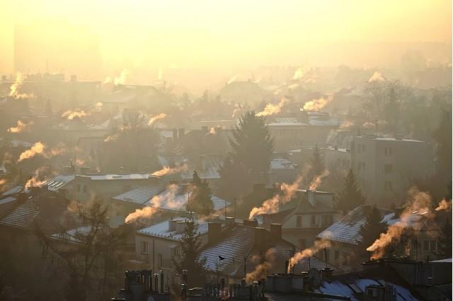 Listę najbardziej rakotwórczych miast na Opolszczyźnie w 2020 roku znajdziesz w naszej galerii.