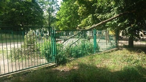 Gałąź drzewa runęła na przedszkolny plac zabaw