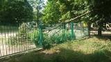 Gałąź drzewa runęła na przedszkolny plac zabaw w Zielonej Górze. Jaki jest stan drzew w mieście?