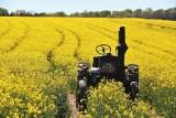 Te maszyny rolnicze i surowce możesz kupić podczas licytacji komorniczych w całej Polsce. Sprawdź okazyjne ceny!