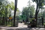 Radny PiS chce, żeby władze postawiły obok zoo stojaki na rowery. Władze pytają, skąd wziąć pieniądze w budżecie. A chodzi o 180 zł