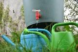 Dopłaty do zbierania deszczówki. Najchętniej z programu Moja Woda. Ile kosztują zbiorniki na deszczówkę?