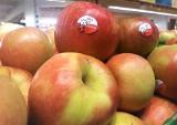 Owoce, warzywa, mięso i ryby? Doskonałe na wiosenne posiłki