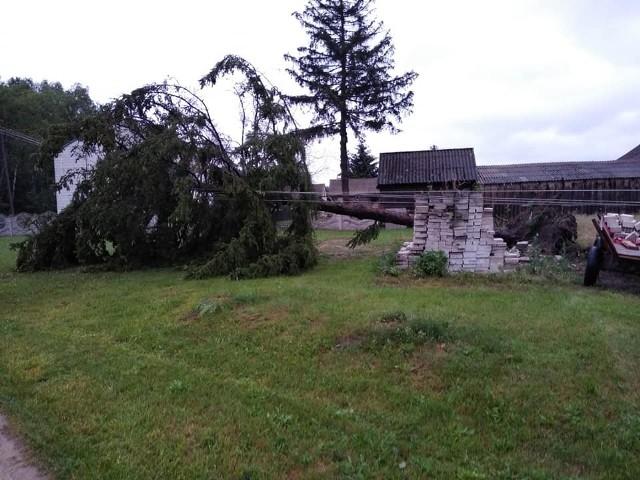 Druhowie z OSP Kazanów usuwali skutki burzy, jaka przeszła w poniedziałek po południu na terenie gminy.