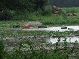 Jaki jest stan rowów melioracyjnych? Rolnicy boją się zalania