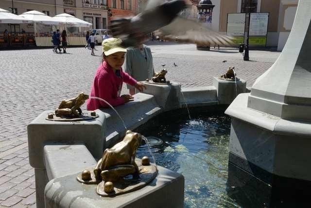 Jeszcze kilka dni temu poziom wody w fontannie znacznie przekraczał stany alarmowe