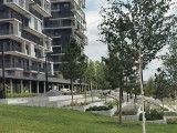 Pierwsza Dzielnica. Zielone tarasy na Góreckiego w Katowicach. Są już sosny, brzozy, kwiaty, trawy. Rzeczywistość vs wizualizacje