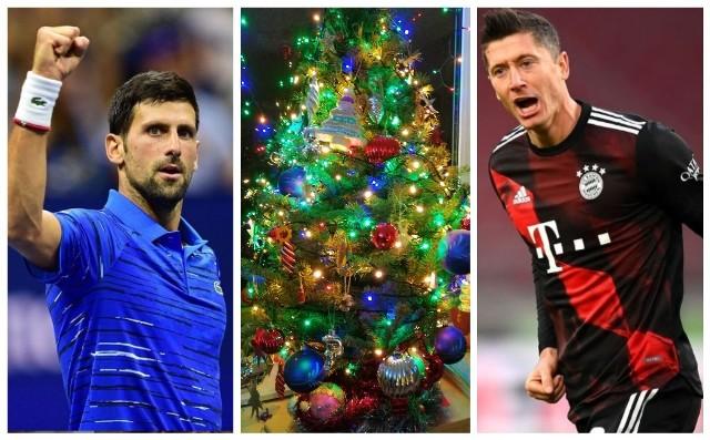 Boże Narodzenie to czas wręczania świątecznych prezentów. Jedni na nie zasłużyli, inni trochę mniej. Nasza redakcja wręcza gwiazdom sportu (w większości polskim) symboliczne pomarańcze i rózgi.Zaczynamy od pomarańczy, w końcu przy świątecznym stole powinno być miło, a poza tym mimo wszystkich utrudnień i przerw spowodowanych koronawirusem nie brakowało w 2020 roku sportowców, którzy naprawdę zasłużyli na pochwałę. Największą pomarańczę dostaje oczywiście...Zobacz kolejne zdjęcia. Przesuwaj zdjęcia w prawo - naciśnij strzałkę lub przycisk NASTĘPNE
