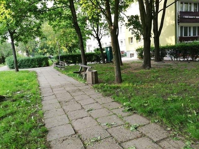 Tereny przy ulicy Łąkowej w Opolu zyskają nowy blask dzięki miejskim inwestycjom.