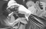 Poruszające zdjęcia z porodówki Szpitala Kieleckiego świętego Aleksandra na Instagramie! Tak wyglądają pierwsze chwile życia dziecka