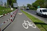 Niebezpieczne ulice w Poznaniu dla rowerzystów. Tutaj najczęściej dochodzi do wypadków!