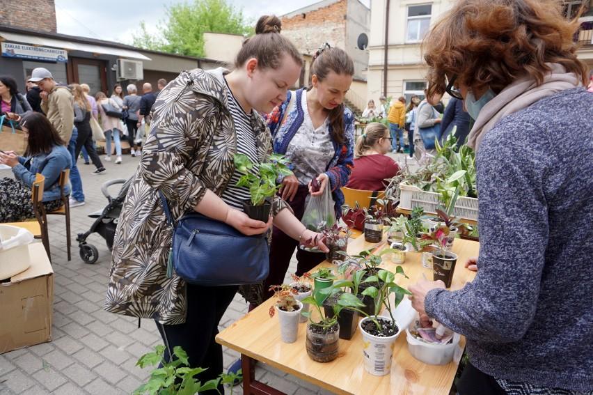 V Lubelska Wymiana Roślin przy ul. Zamojskiej w Lublinie. Chętnych nie brakowało! Zobacz zdjęcia