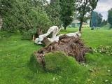 Zniszczenia w parku przy polu golfowym. Ucierpiały rzeźby, uciekły zwierzęta ZDJĘCIA
