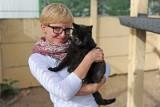 Zwierzęta w mieście: Wolno żyjące koty i schroniskowi rezydenci [ROZMOWA]