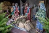 Na Starym Rynku w Bydgoszczy zakończył się montaż szopki bożonarodzeniowej [zdjęcia]