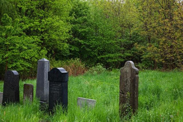 Na części niegrzebalnej cmentarza żydowskiego w Bielsku-Białej zostanie utworzony Tajemniczy Ogród. Porozumienie w tej sprawie zostało podpisane w Ratuszu w poniedziałek 17 maja