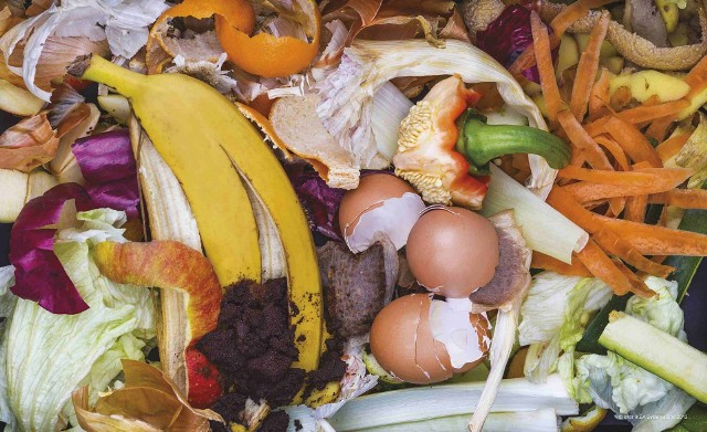 Odpady organiczneBrak koszy i nieroztrzygnięte przetargi - o wdrożeniu ustawy śmieciowej