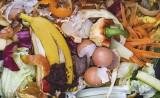 Brak koszy i nieroztrzygnięte przetargi - o wdrożeniu ustawy śmieciowej