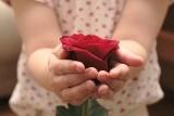 Dzień Matki. Życzenia dla mamy, wierszyki na Dzień Matki