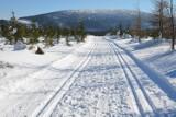 Na Dolnym Śląsku powstanie Ultrabiel - drugi maraton narciarski