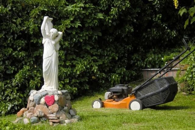 Koszenie trawyKoszenie trawy: narzędzia, zasady, technika. Poradnik