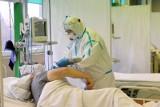 Koronawirus. Ból zębów, wypadanie włosów - polscy lekarze opisali nowe objawy mogące świadczyć o zakażeniu SARS-CoV-2