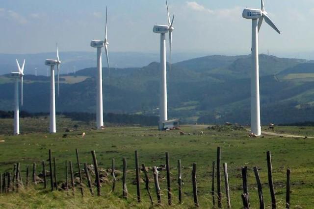 Organizacjom ekologicznym z całej Polski nie podoba się tzw. raport oddziaływania na środowisko, przygotowany przez inwestora -  firmę Eko Energia Polska.