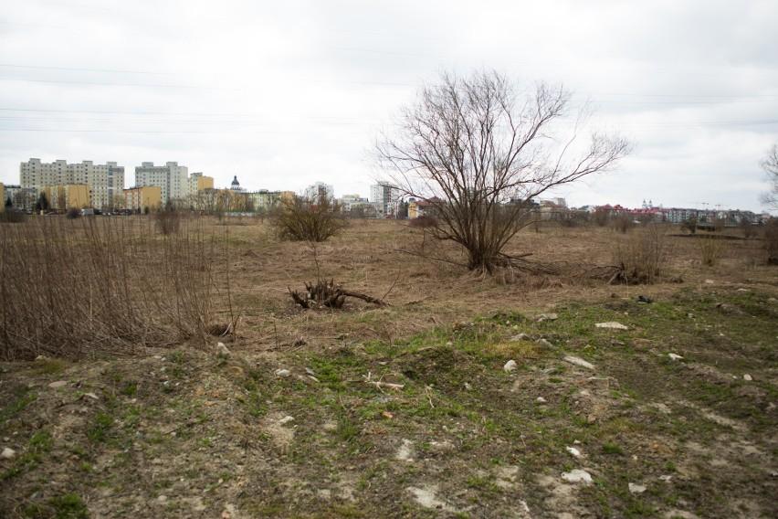 Kontrole wykazały, że grunt na działce radnego Perkowskiego...