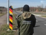 Na niemiecko polskiej granicy powstaje płot przeciw dzikom, ale może zatrzymać nie tylko zwierzęta