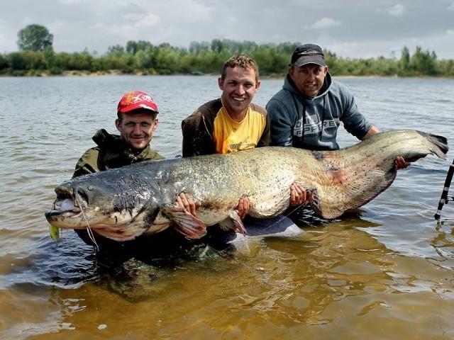 Od lewej Andrzej Ozan, Krzysztof Rózga i Tomasz Miernik z rekordowym sumem – 230 centymetrów i około 90 kilogramów wagi.