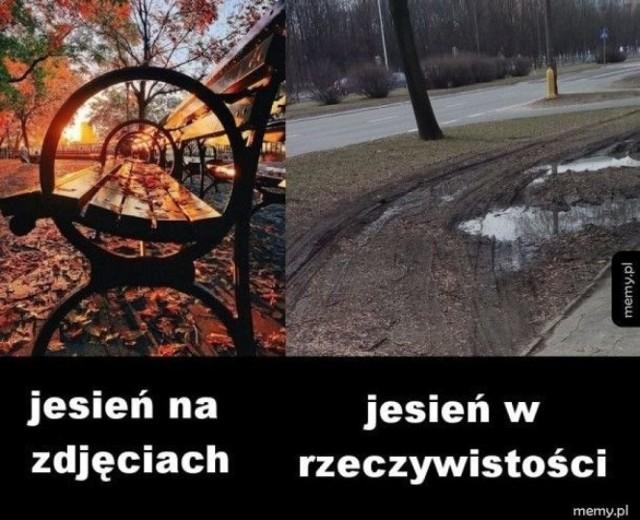 Pierwszy dzień jesieni MEMY. Najlepsze śmieszne obrazki na przyjście jesieni. Złota polska jesień oczami internautów [ZDJĘCIA]