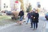 Puma Nubia, o której porwaniu mówi cała Polska, pięć lat temu była z właścicielem w Brzezinach. Po co? ZDJĘCIA