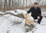 Oprócz dzików i saren rolnikom  mocno we znaki dają się bobry