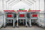 Lubuskie: sklepy otwierają się w niedzielę. Lidl, Biedronka, Kaufland, Dino: lista sklepów otwartych w niedzielę w Lubuskiem