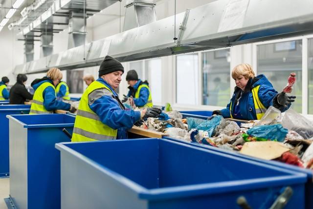 Pracownicy obawiają się chorób od ukłucia podczas  sortowania