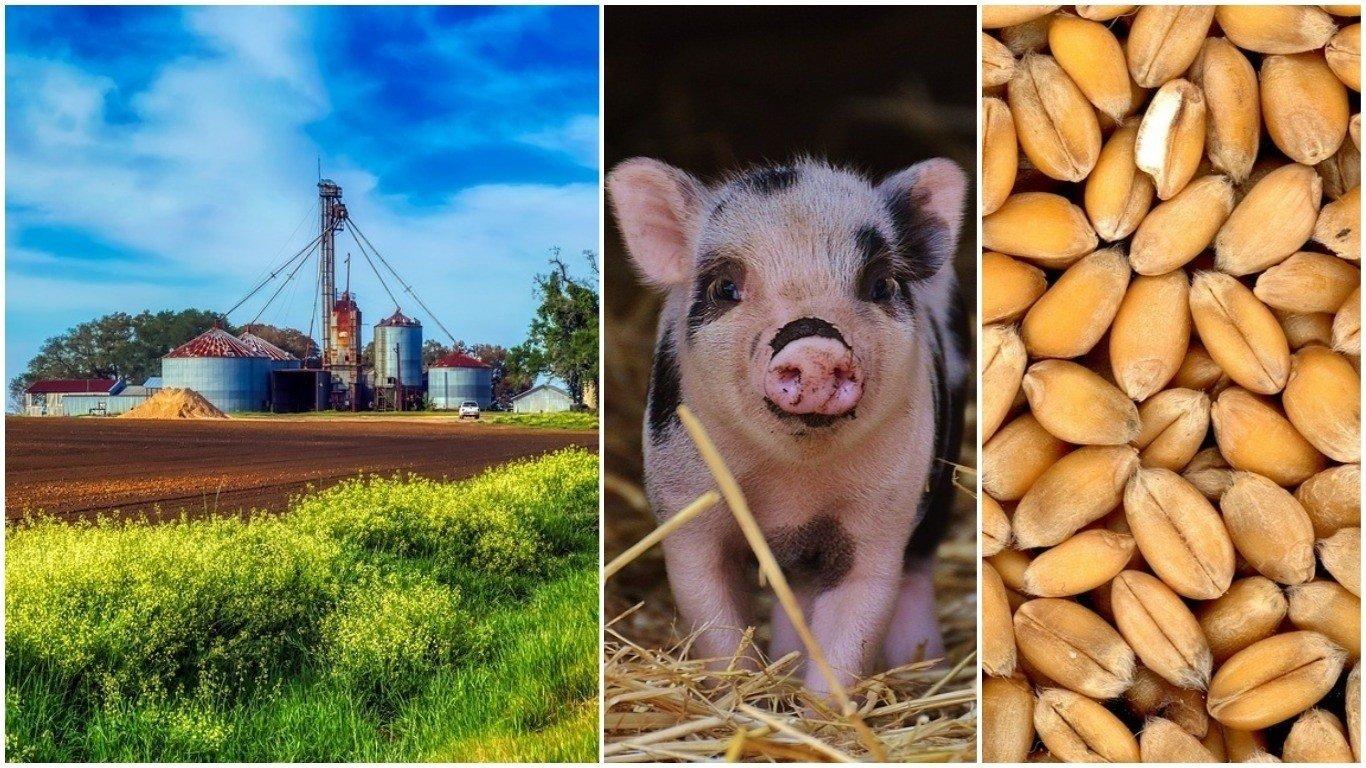 196199dd69b7d4 Środki produkcji rolnej drożały już 17 miesiąc z kolei [ceny, prognozy]