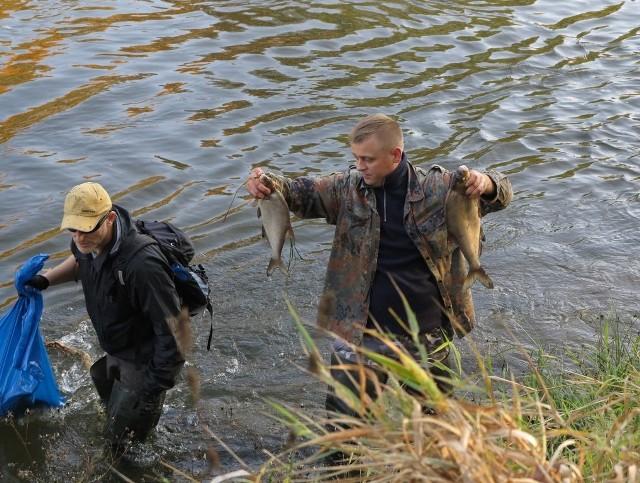 Wędkarze od soboty wyłowili już tony martwych ryb. Zapowiadają, że nie zostawią tak tej sprawy
