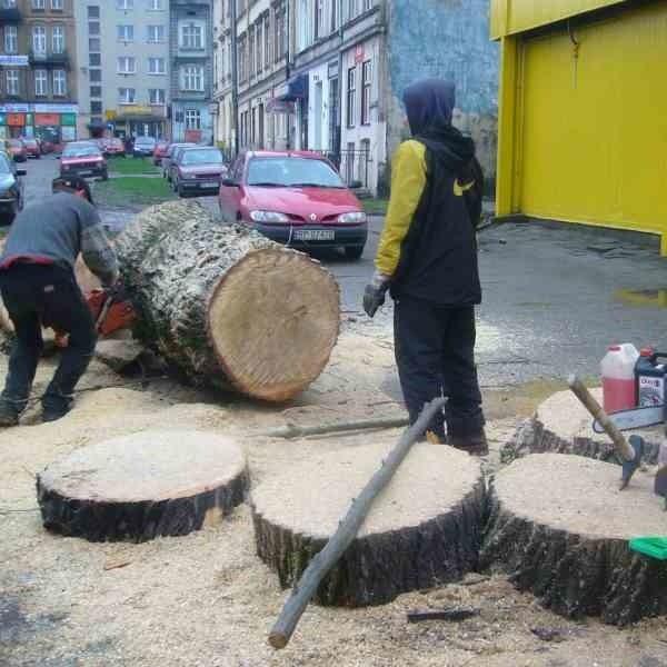 Niedawno wycięte zostały drzewa na placu obok ul. Jagiellońskiej i Wodnej. Ekolodzy twierdzą, że stało się to w okresie ochronnym, czyli po 1 marca.