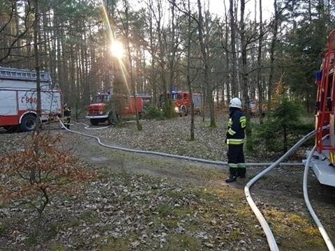 Strażacy apelują o dużą ostrożność, bo w lasach jest bardzo sucho.