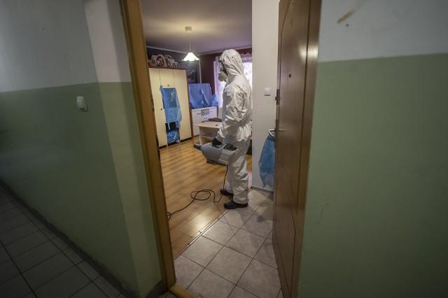 Problem z pluskwami w budynku ZKZL powraca co jakiś czas - od 2020 r. 6 razy dezynsekował części wspólne.
